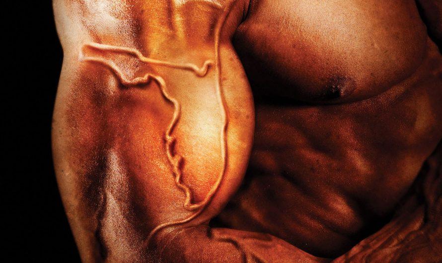 Анаболический стероид — сильный фитнес, бодибилдинг и рост мышц